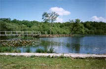 A view of the 6 acre coarse lake at Bron Eifion